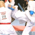 AlancarExpress-Palibex-Trofeo-Karate